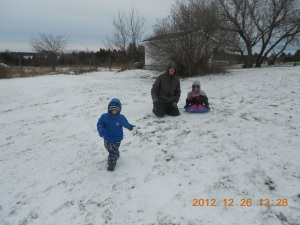 Peter, Aiden & Abby in the backyard sledding.