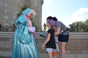 Meeting the Fairy Godmother behind the Castle