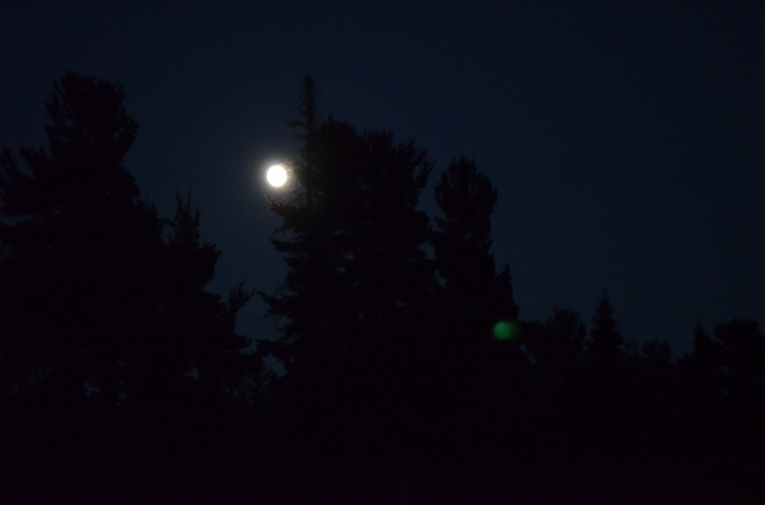 The moon on Fri evening