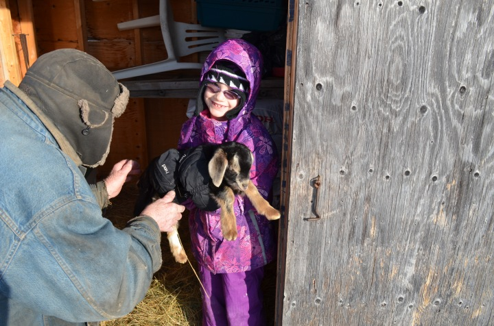 Abby holding a goat with Uncle Joe looking on.