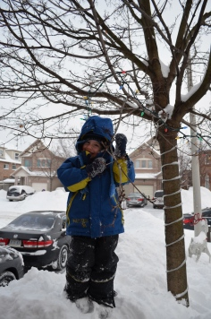 Aiden in front yard holding on to branch that is about 10 ft off the ground