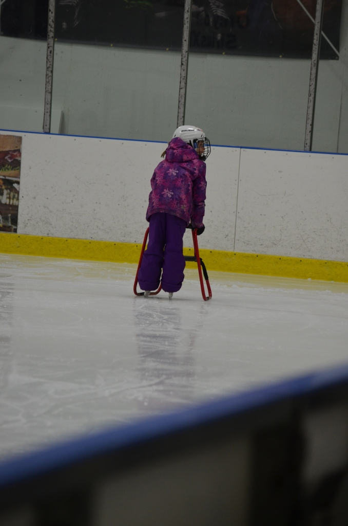 Abby with her skating walker