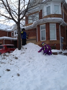 Kids playing in our front yard!!!