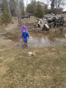 Abby and Aiden checking out a puddle Mama and Papa's yard