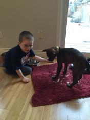 Aiden feeding Marley.