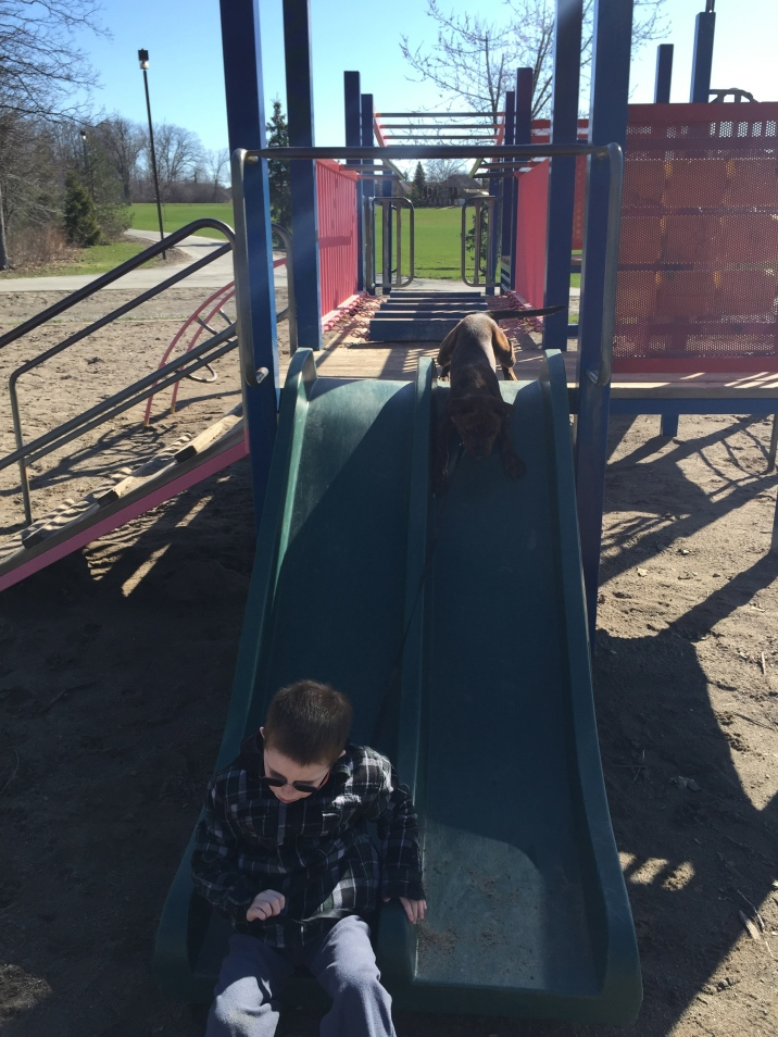 Marley sliding down the slide with Aiden.