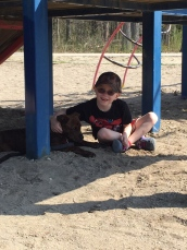 Marley hanging out in the shade with Aiden.