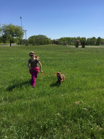 Marley running in the park with Abby.