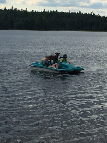 Abby, Aiden and Marley going for a paddle boat ride