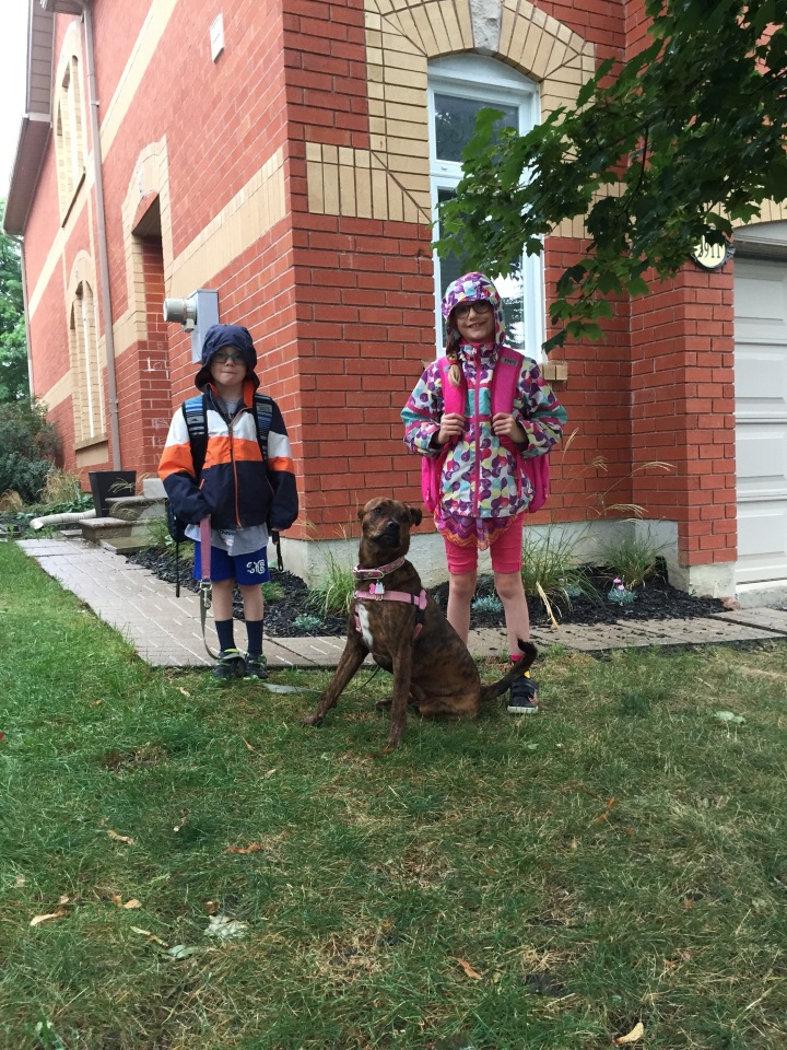 Aiden (starting 2nd grade) Abby (starting 4th grade) with Marley