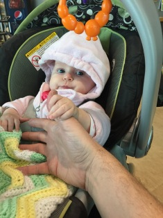 Eva checking out my thumb, getting ready to attack