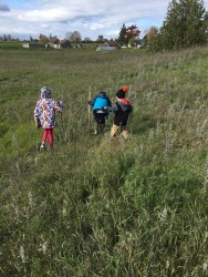 Abby, Aiden & Macklan walking in the field behind Papa & Mama's. The farm in the background in Uncle Joe's house.