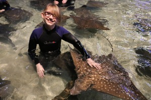 Abby in the water petting the Stingrays