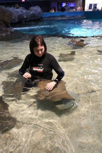 Melissa in the water petting the Stingrays