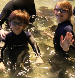 Abby & Aiden in the water petting the Stingrays
