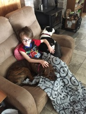 Aiden chilling with Marley & Lindy