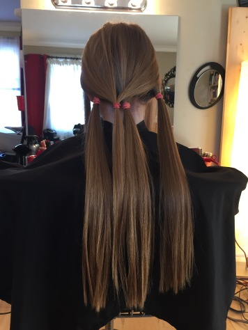 The 3 sections of Abby's hair to be cut.