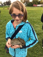 Abby petting a rabbit at the petting zoo