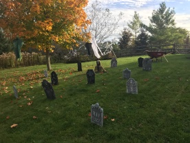 The cemetery on our side lawn