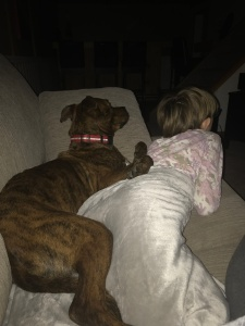 Marley cuddling Abby on the couch watching a movie